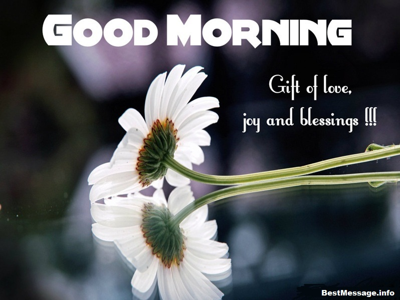 Cute Good Morning sms