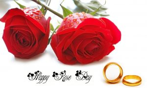 Happy Rose Day Images Free Download